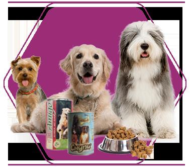 Храна за кучетата